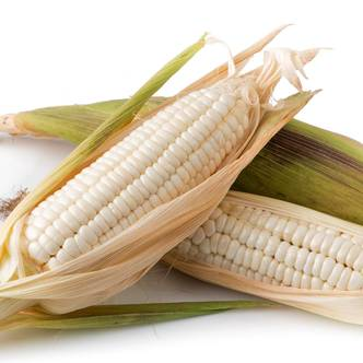 Sweetcorn. WHITE LADY. 30 seeds per pkt.